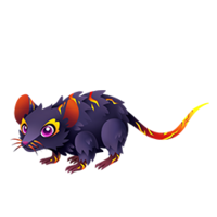Magma Mouse Adult