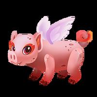 Pigmy Adult