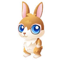 Bountiful Bunny Baby