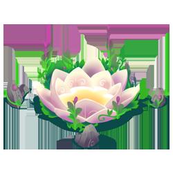 File:Evolution Flower.png