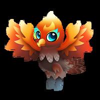Cockatorch Juvenile