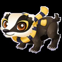 Loyal Badger Juvenile