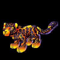 Lava Leopard Adult