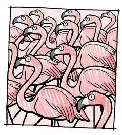 File:Pink nightmare.png