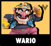 WarioIcon USBIV