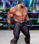 Hulk Hogan 2nd alternate attire