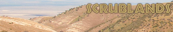 Scrublands biome