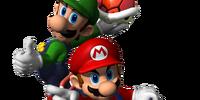 Mario Kart: Double Drive!!