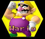 Wario MKC
