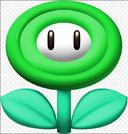 Vine Flower
