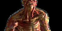 Fallout 5/Humanoid Enemies