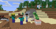 Teaser (Minecraft Party)