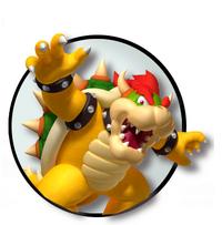 Bowser logo