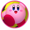 Kirby MDR