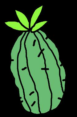 CactusFruitSportsResort