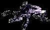 Black Shell Radroach