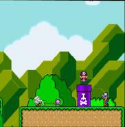 Mario 17