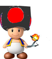 Final Toad