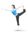 Wii fit