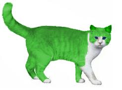File:Apple Cat.png