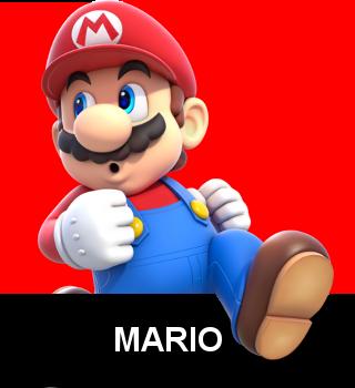 NSM Mario.dojo