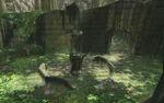 Sacred Grove 4