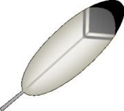 Wing Feather