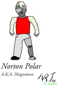 Norton Polar