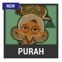 ACL -- Super Smash Bros. Switch character box - Purah