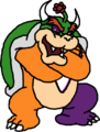 Crazy Bowser (Jake's Version)