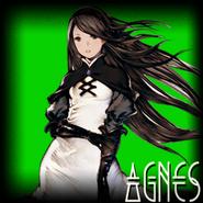 AgnesSelectionBox