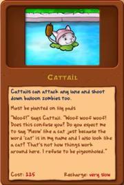 File:Cattail.jpg