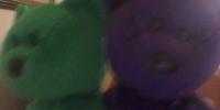 Clover & Rose