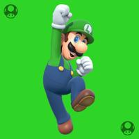 02 LuigiDojo