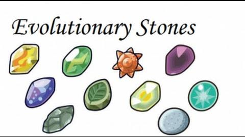 File:Pokemon Theory How Do Evolution Stones Work?-3