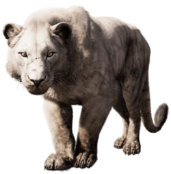 Far cry primal cave lion
