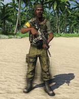 Privateer Assaulter