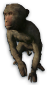 FC3 cutout macaque