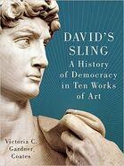 023 davids sling cover