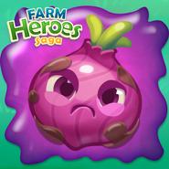 Onion grumpy on slime introduction