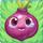 Onion on grass