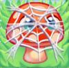 Mushroom under cobweb on grass