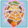 Carrot grumpy under cobweb