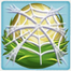 Alligator nest under cobweb