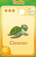 Cleaner Turtle