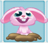 Rob the Rabbit