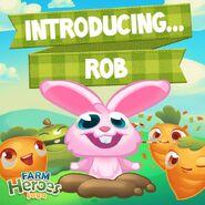 Rob Introducing