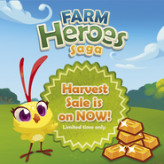 Sale Harvest sale is on now