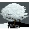 Dogwood Tree (decoration)-icon