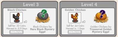 Black n Gold Chicken Eggs